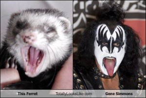 Turbo e Gene Simmons